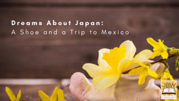 Dreams About Japan: A Shoe and a Trip to Mexico