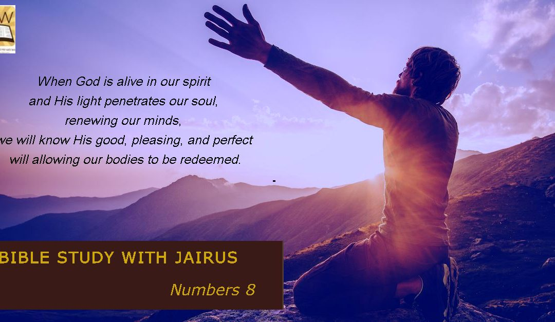 Bible Study with Jairus – Numbers 8